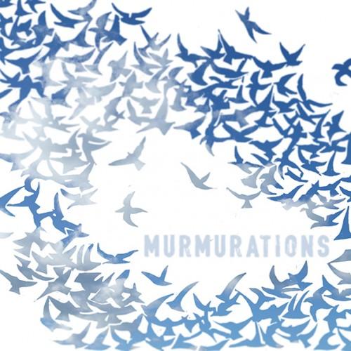 cover- murmurations